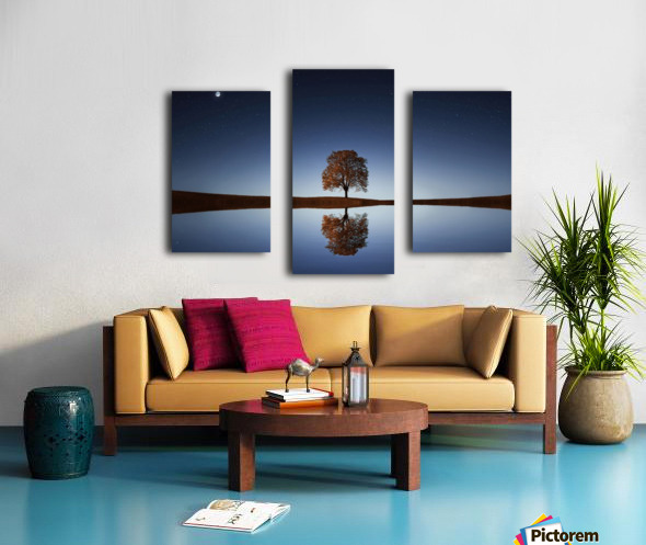 Reflection tre Canvas print
