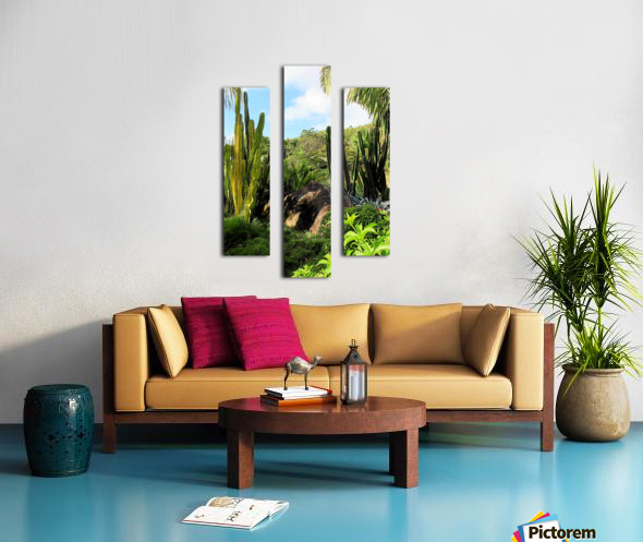 Nevis cactus Canvas print