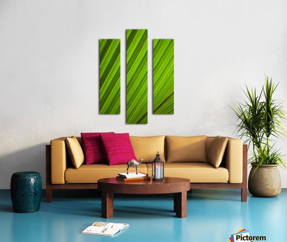 Graphic Detail Of Coconut Palm Leaf. Canvas print