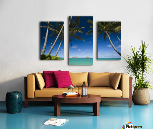 USA, Hawaii, Oahu, Palm tree over Pacific ocean with Mokulua island in background; Lanikai Canvas print