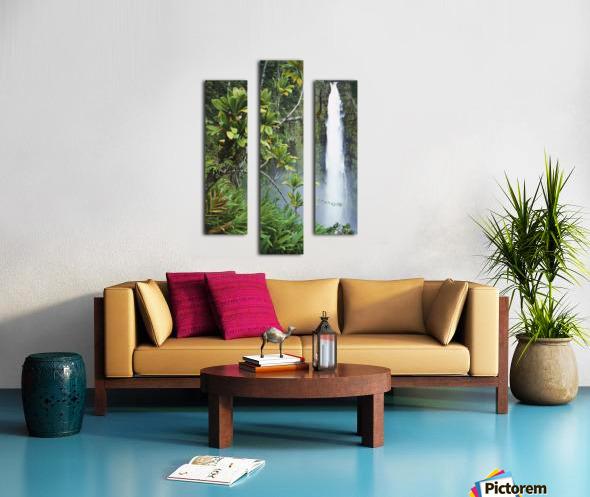 Hawaii, Big Island, Akaka Falls Surounded By Ti-Leafs And Greenery. Canvas print