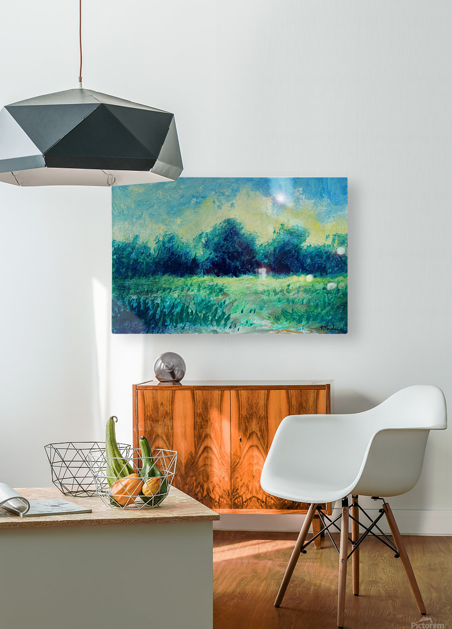Landscape and Sun  HD Metal print with Floating Frame on Back