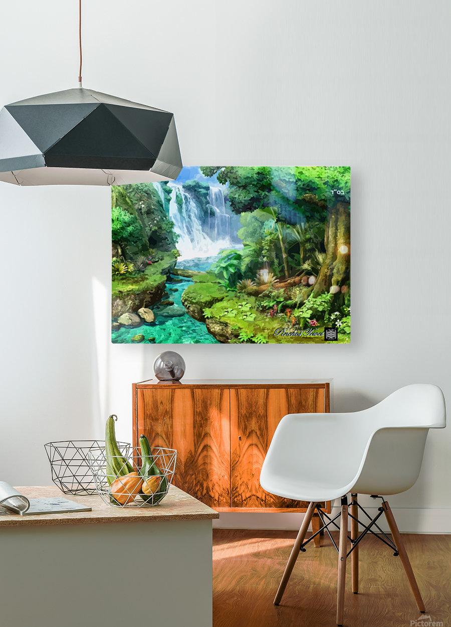 ART  Pinchos  WATER  Baal shem tov VR  HD Metal print with Floating Frame on Back