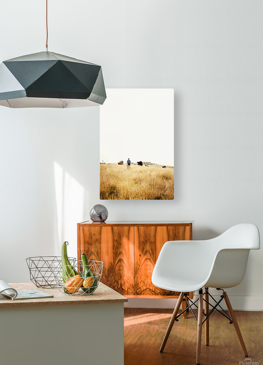 Cow man  HD Metal print with Floating Frame on Back