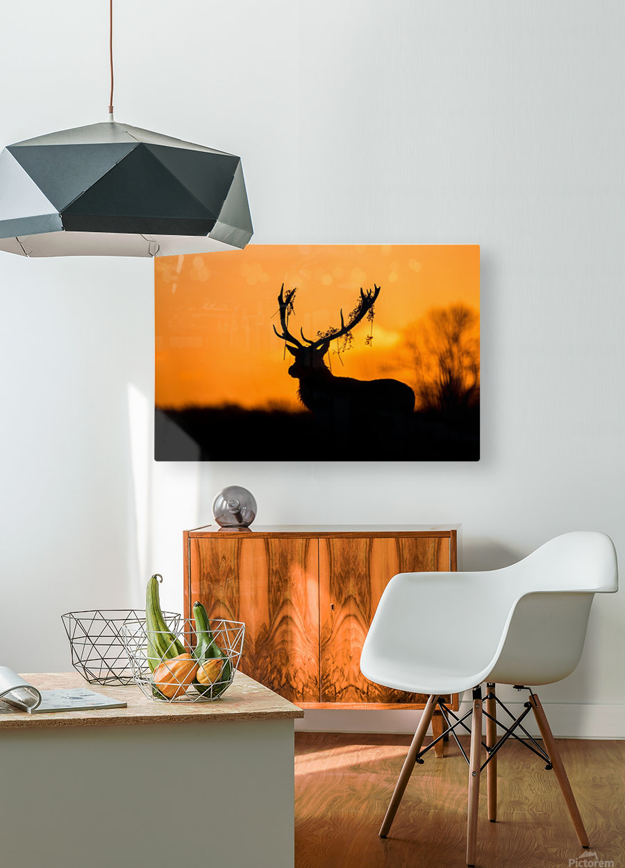 Red Deer Stag Silhouette  HD Metal print with Floating Frame on Back