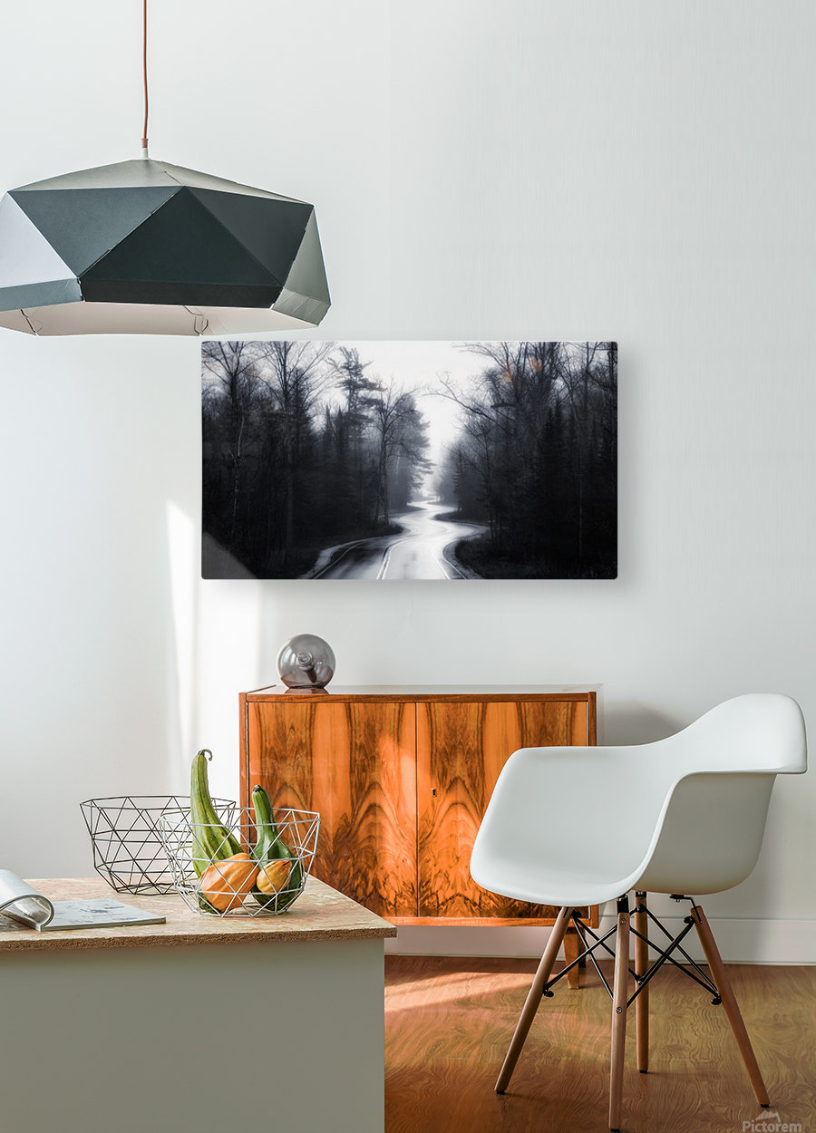 Slalom  HD Metal print with Floating Frame on Back