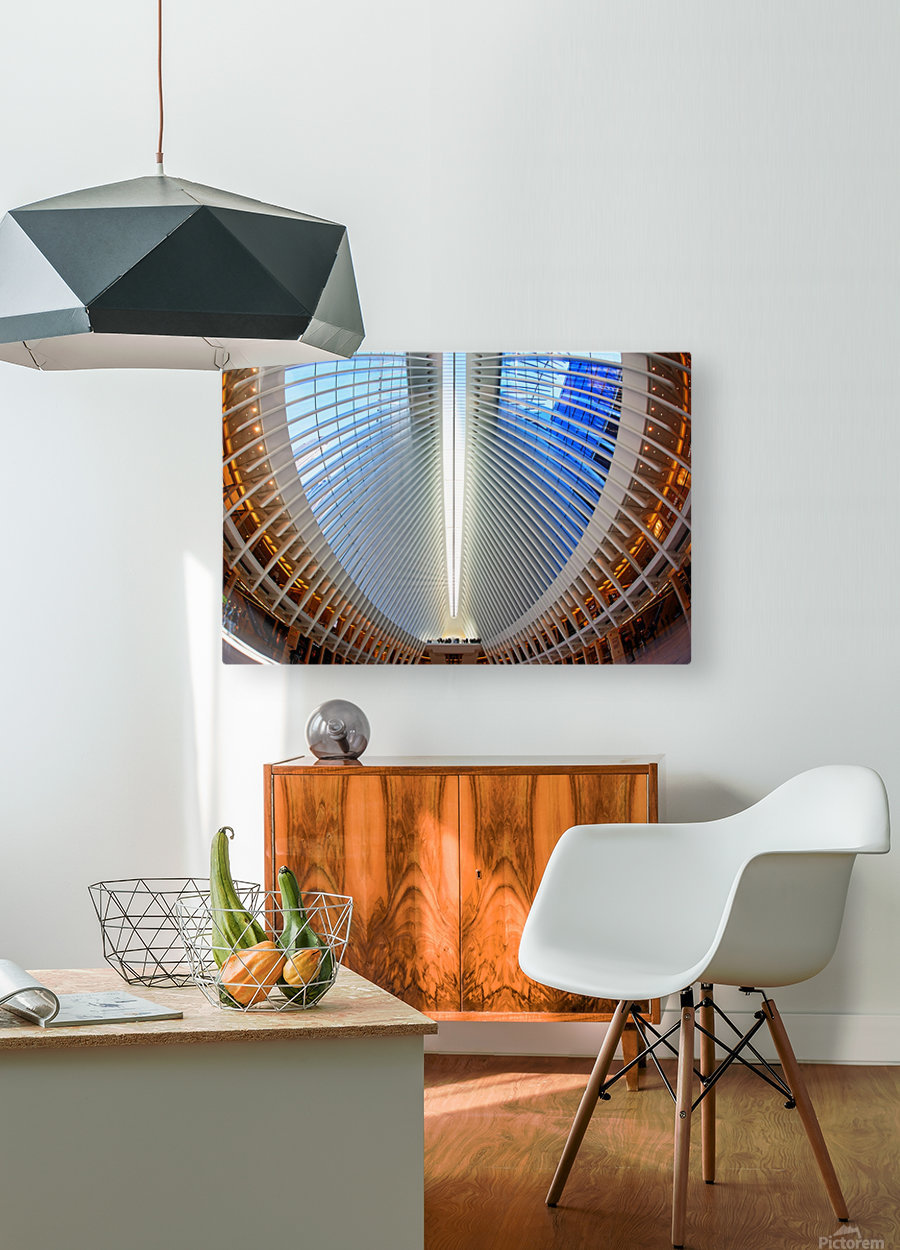 Oculus  HD Metal print with Floating Frame on Back