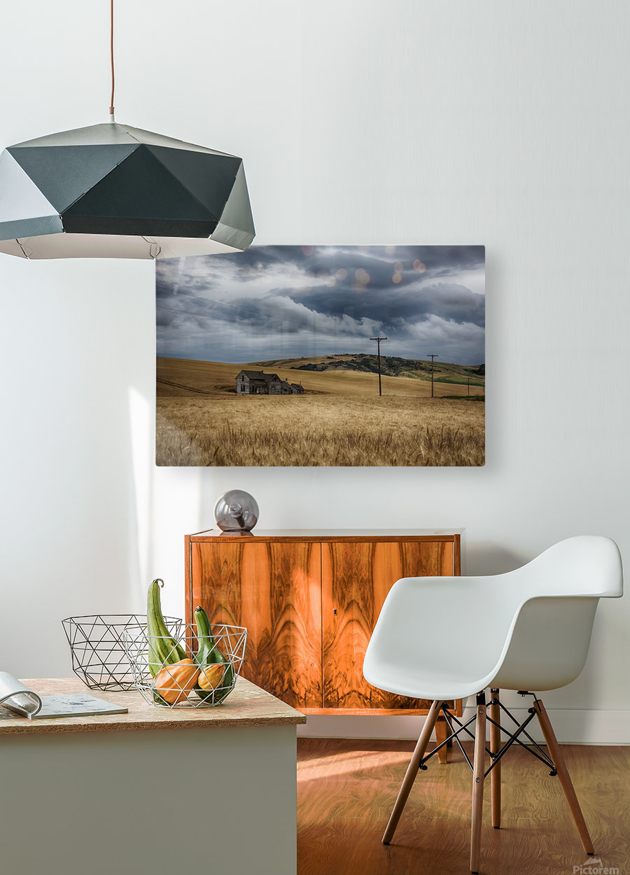 Old, rustic wooden house in the middle of a golden field under a stormy sky; Palouse, Washington, United States of America  HD Metal print with Floating Frame on Back