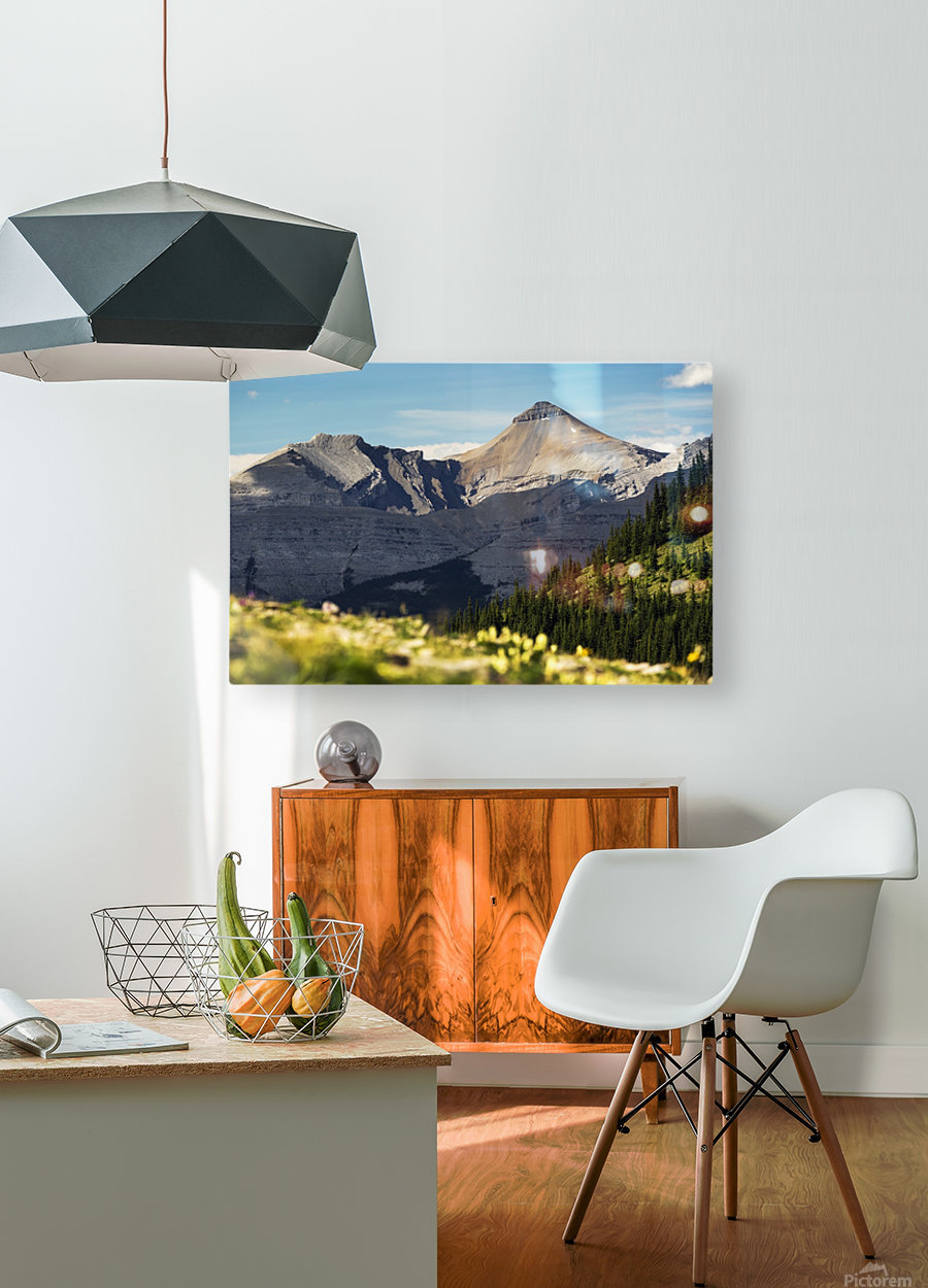 Mountain range with wildflowers on hillside in the foreground and blue sky; Bragg Creek, Alberta, Canada  HD Metal print with Floating Frame on Back