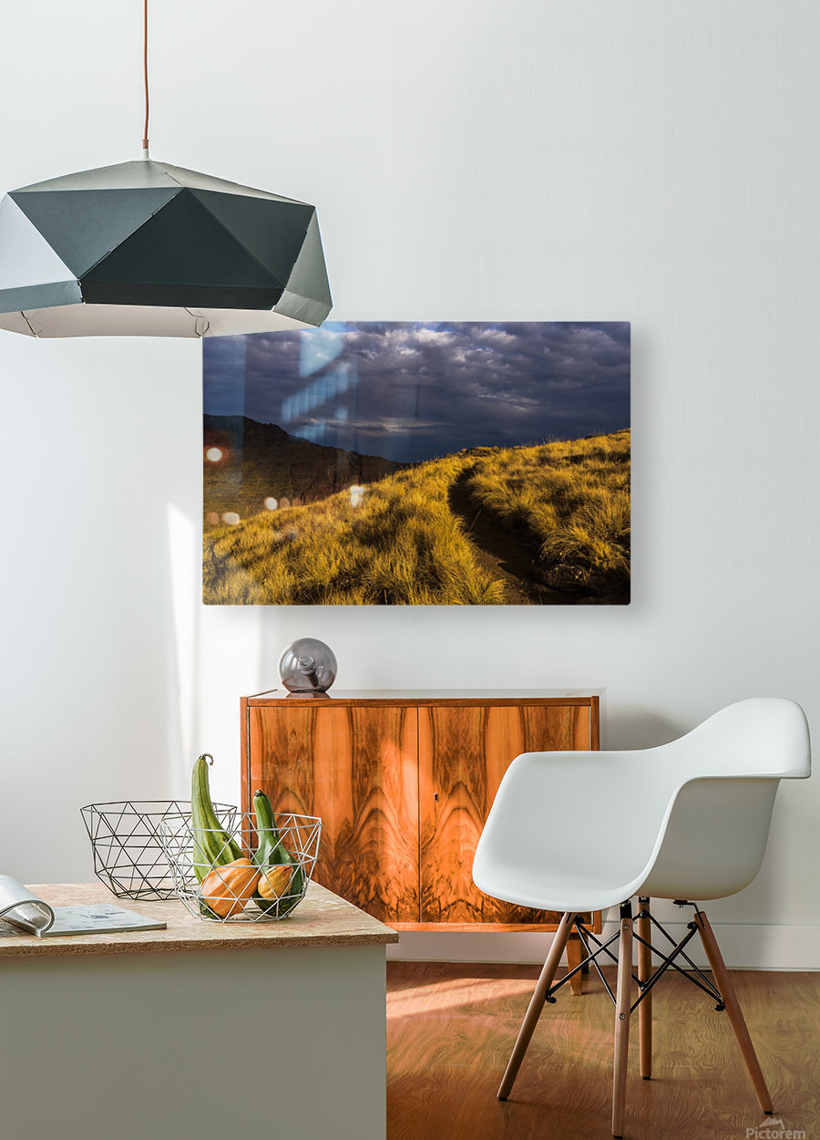 Evening sun highlights Kiger Gorge at Steens Mountain; Frenchglen, Oregon, United States of America  HD Metal print with Floating Frame on Back