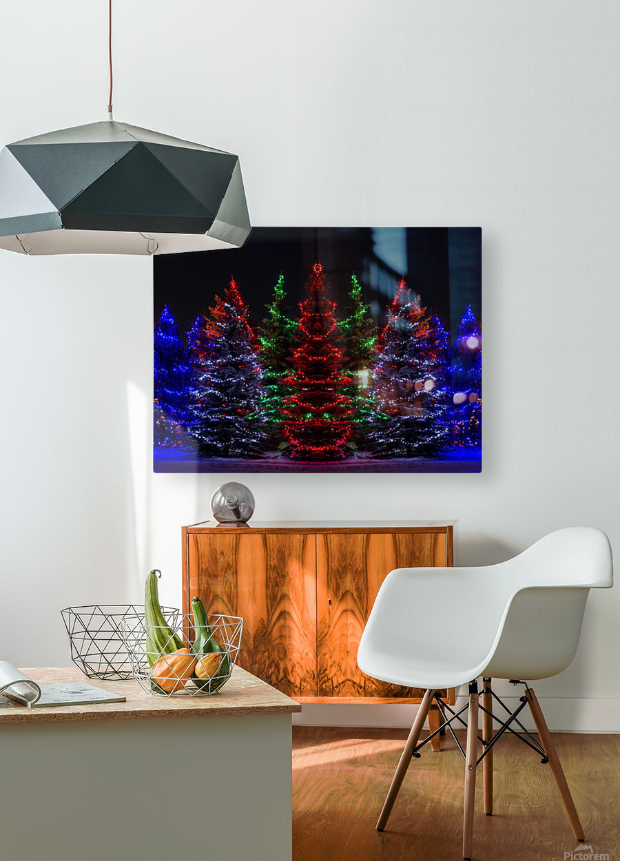 Colourful Christmas lights around several evergreen trees; Calgary, Alberta, Canada  HD Metal print with Floating Frame on Back