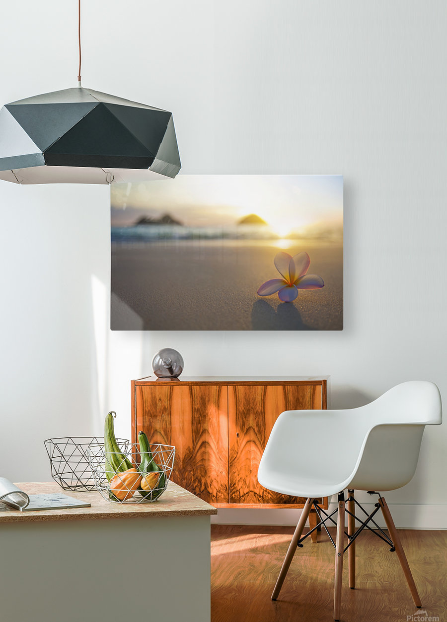 A pink plumeria flower sits on the sand of Lanikai Beach in Kailua with a view of Mokulua twin islands and the ocean at sunset in the distance; Kailua, Oahu, Hawaii, United States of America  HD Metal print with Floating Frame on Back
