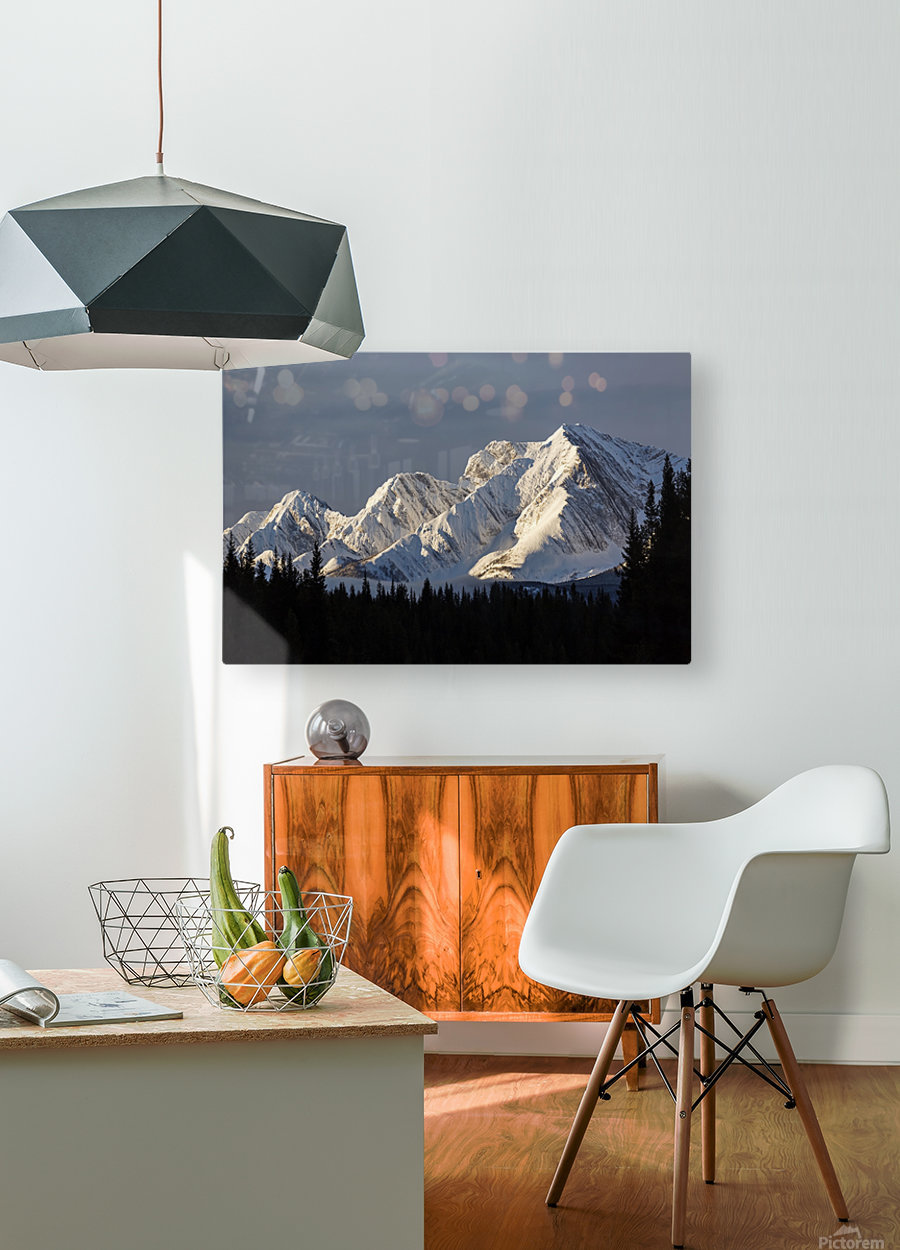 Snow covered mountains with early morning light, silhouetted forest in the foreground, blue sky and clouds; Kananaskis Country, Alberta, Canada  HD Metal print with Floating Frame on Back