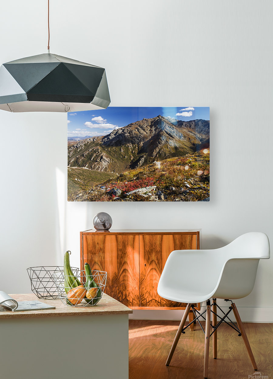 Landscape in the rocky high country of Denali National Park and Preserve, interior Alaska; Alaska, United States of America  HD Metal print with Floating Frame on Back