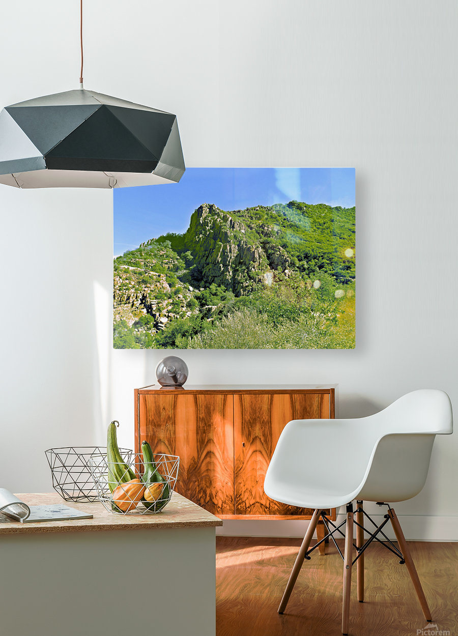 Jerome-3  HD Metal print with Floating Frame on Back