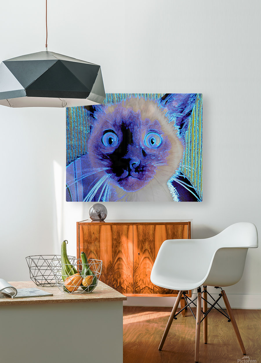 electric kitty  HD Metal print with Floating Frame on Back
