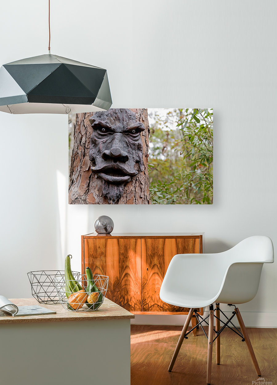The Animated Forest  HD Metal print with Floating Frame on Back