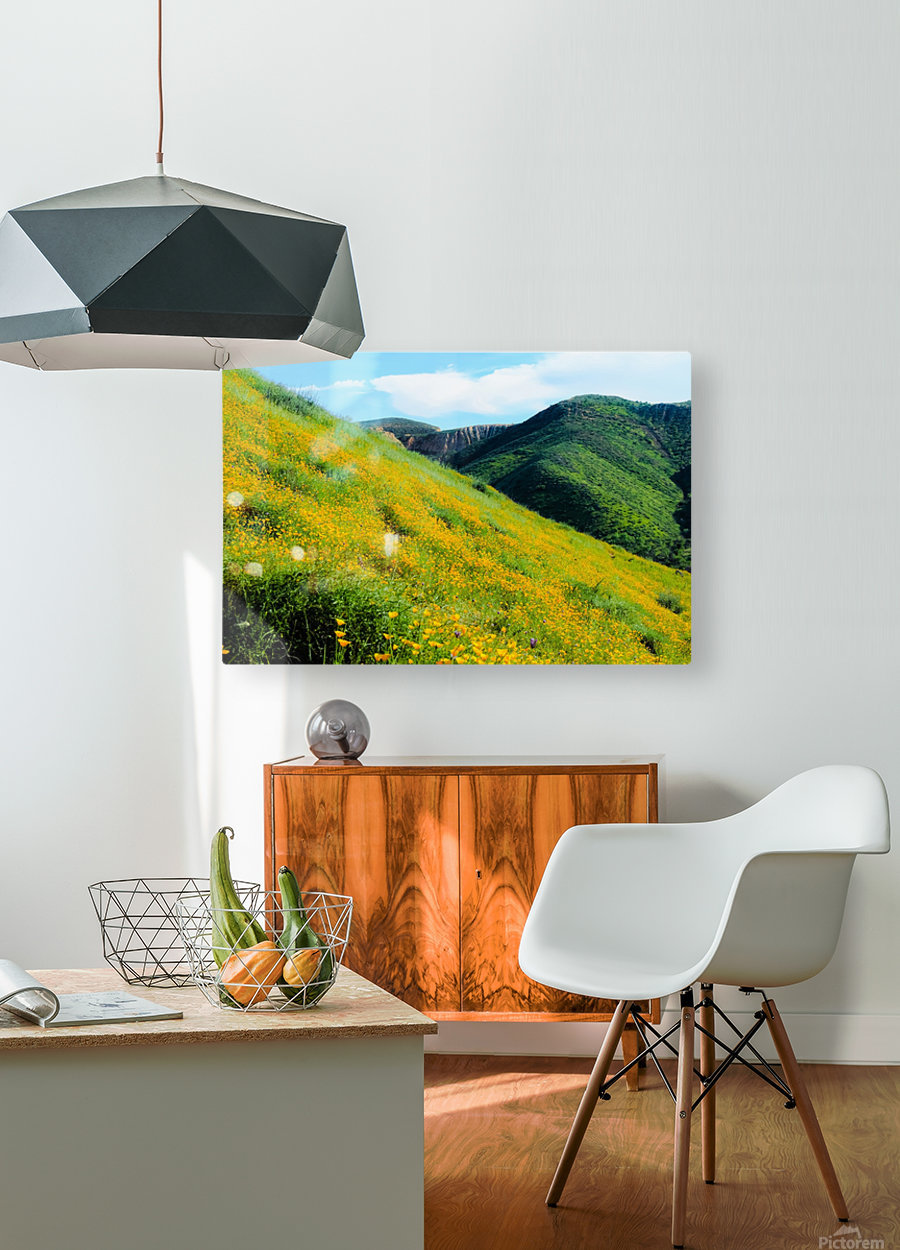 yellow poppy flower field with green leaf and green mountain and cloudy blue sky in summer  HD Metal print with Floating Frame on Back