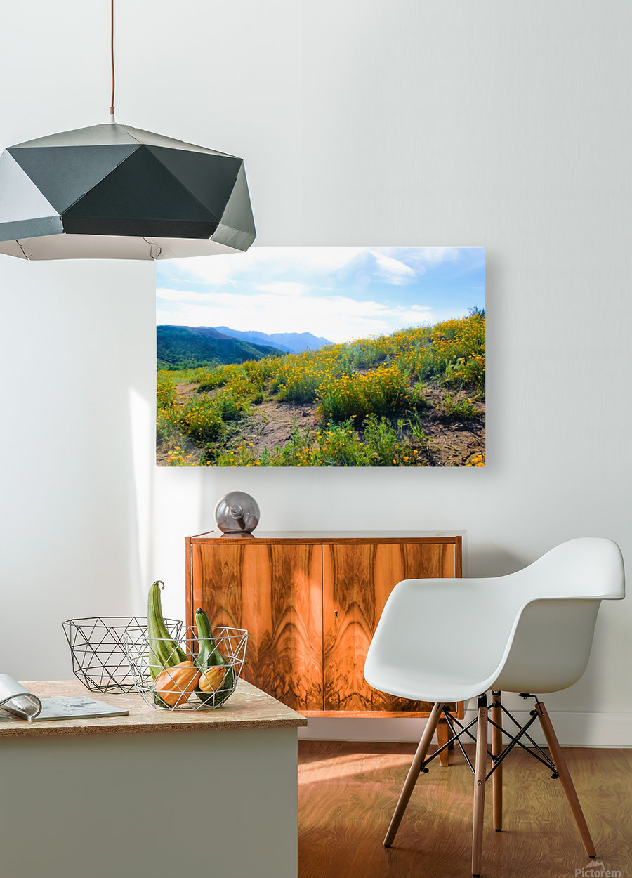 yellow poppy flower field with green leaf and blue cloudy sky in summer  HD Metal print with Floating Frame on Back