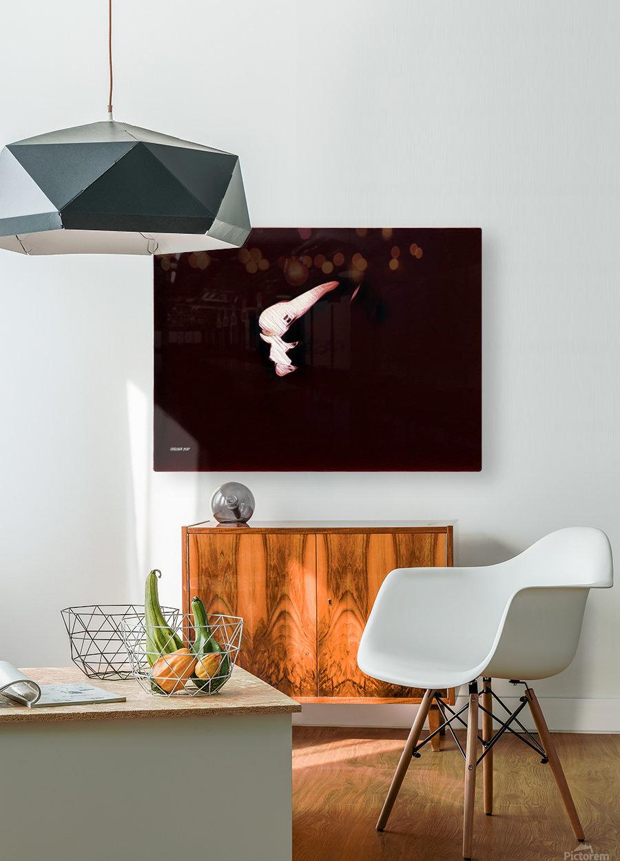 Brüste  HD Metal print with Floating Frame on Back