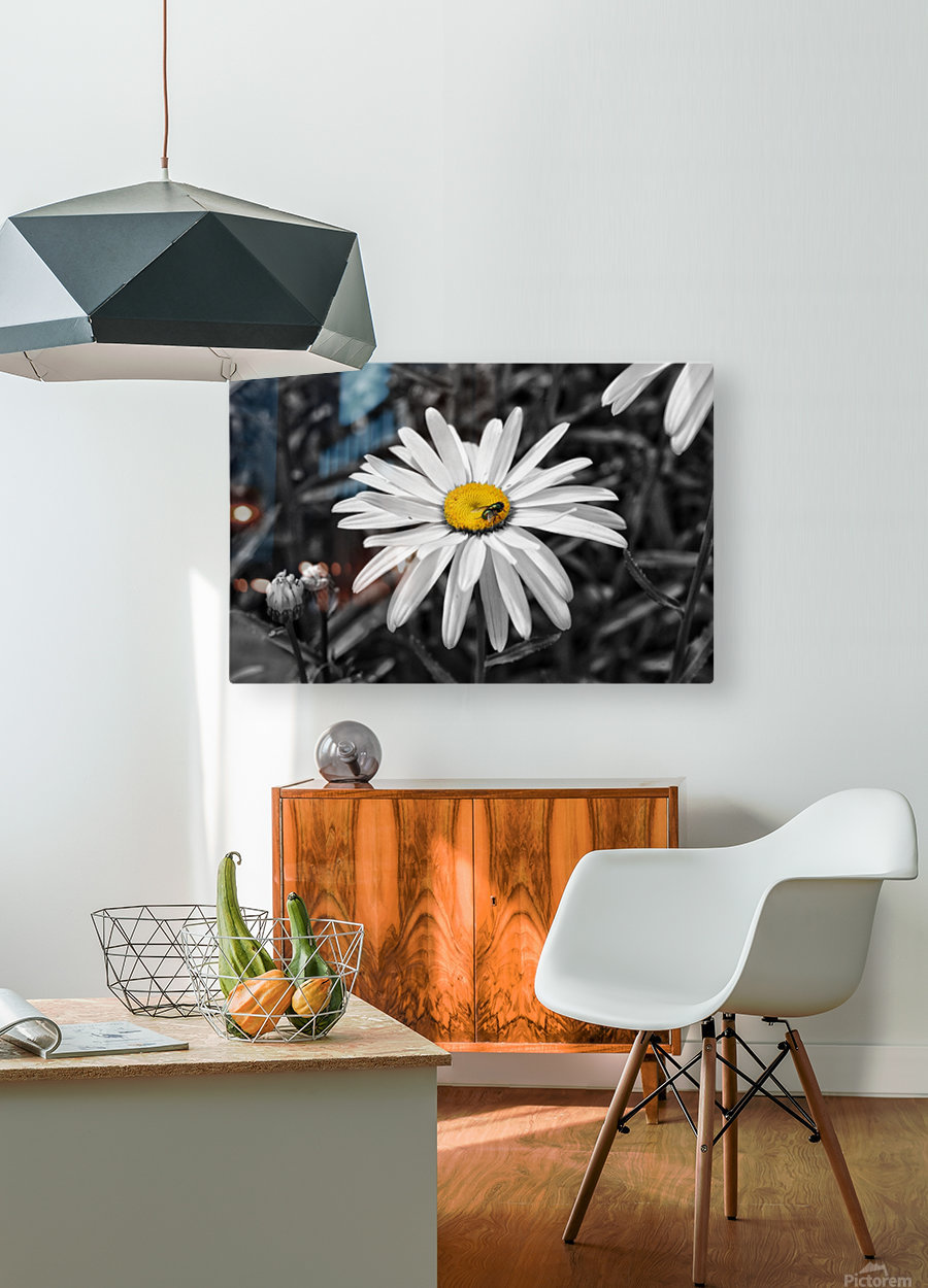 The Fly  HD Metal print with Floating Frame on Back