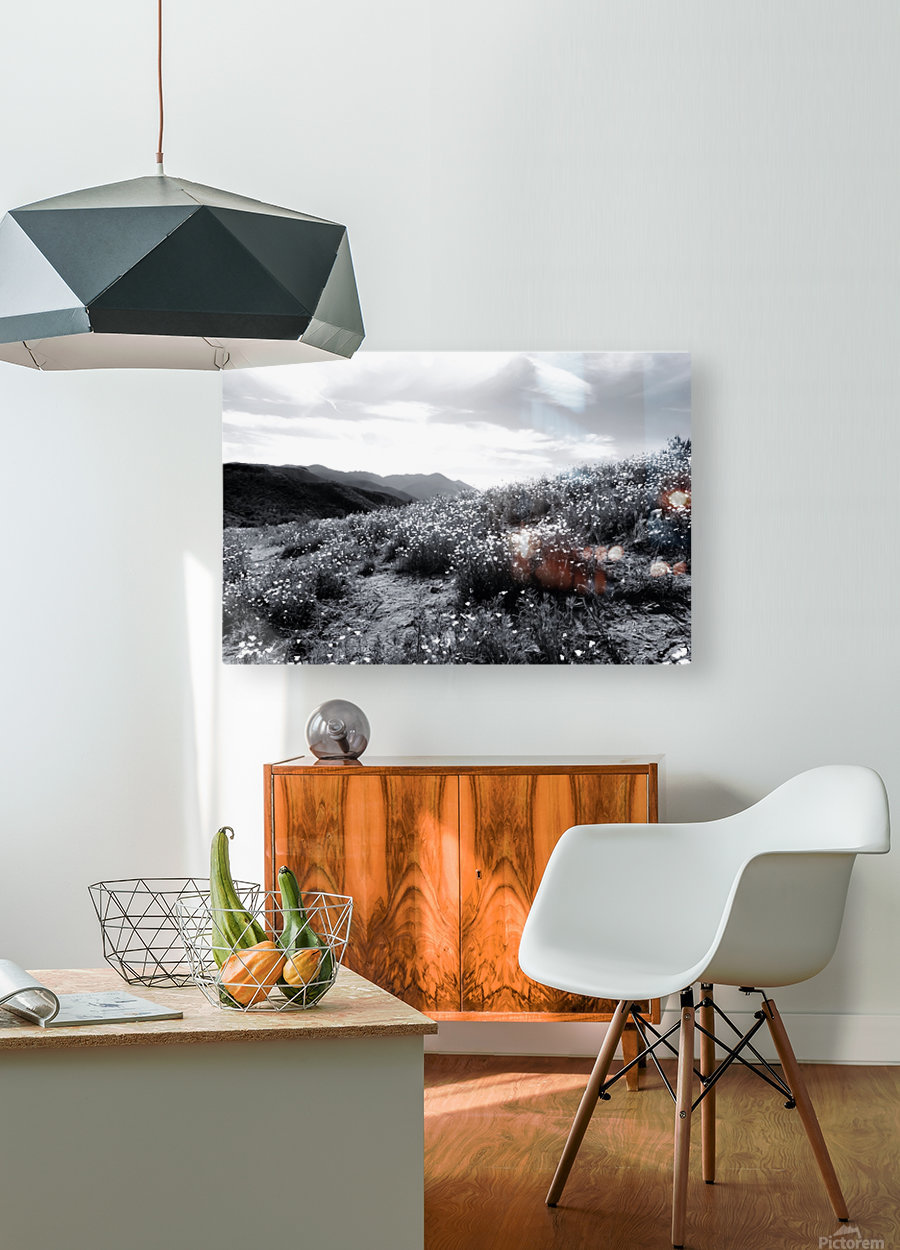 poppy flower field with mountain and cloudy sky in black and white  HD Metal print with Floating Frame on Back