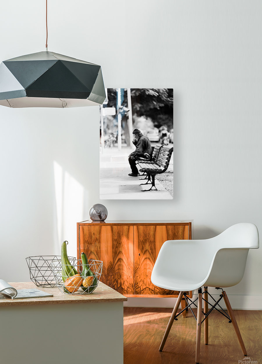 29940006  HD Metal print with Floating Frame on Back