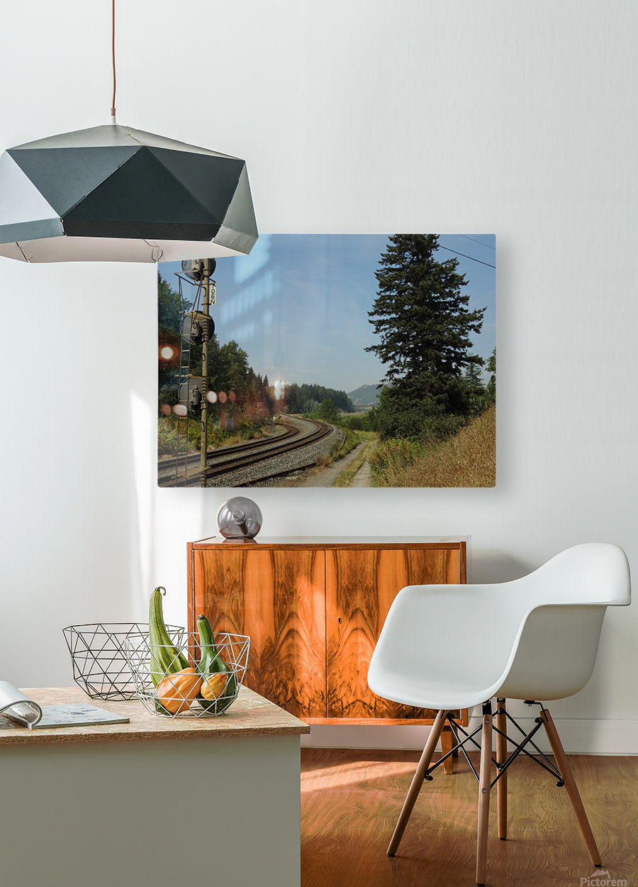 Riding The Rails  HD Metal print with Floating Frame on Back