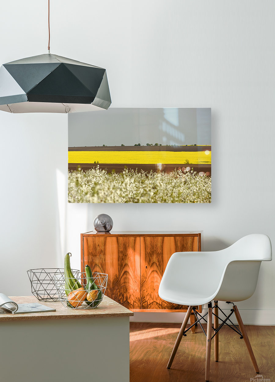 Terra Galicia - 45  HD Metal print with Floating Frame on Back