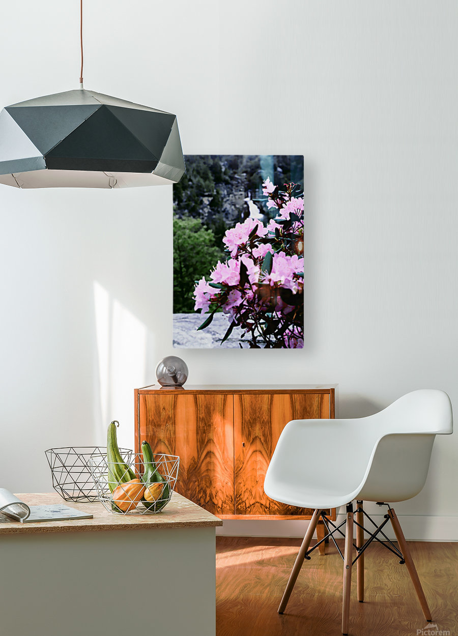 Flowers and Falls  HD Metal print with Floating Frame on Back