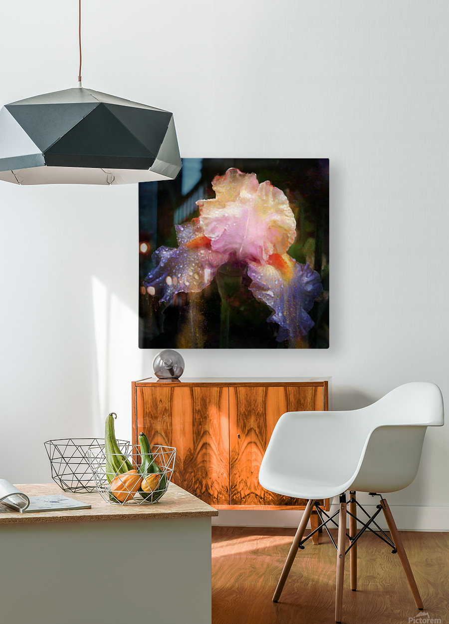 Enchanted Iris    HD Metal print with Floating Frame on Back
