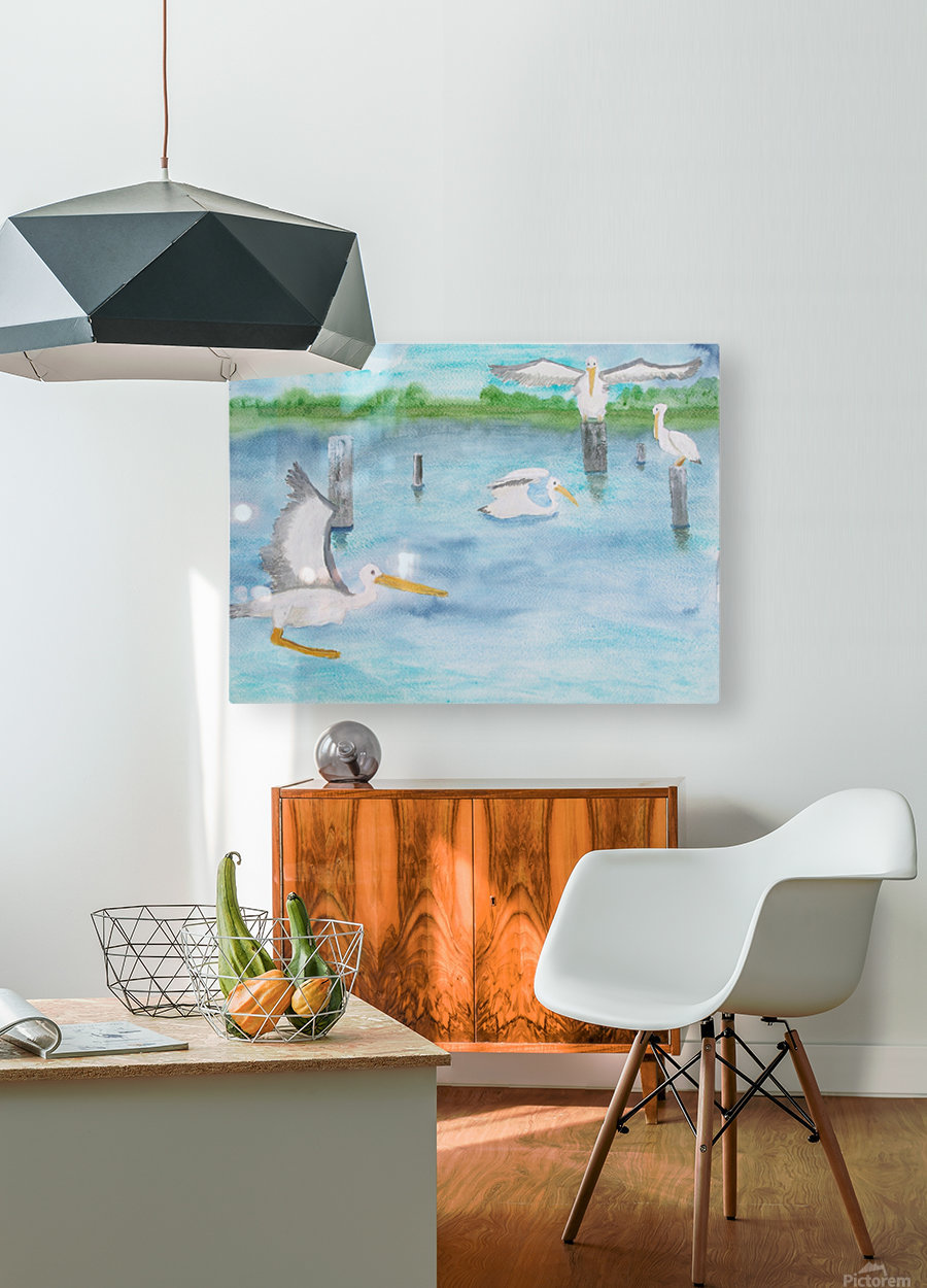 Pelicans in a coastal inlet.  HD Metal print with Floating Frame on Back