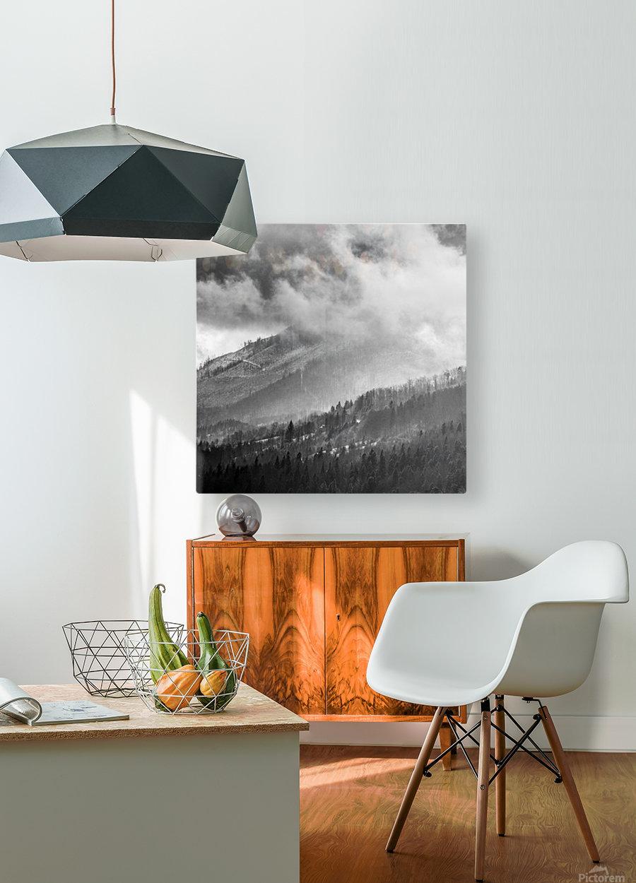 Winter Landscape V  HD Metal print with Floating Frame on Back