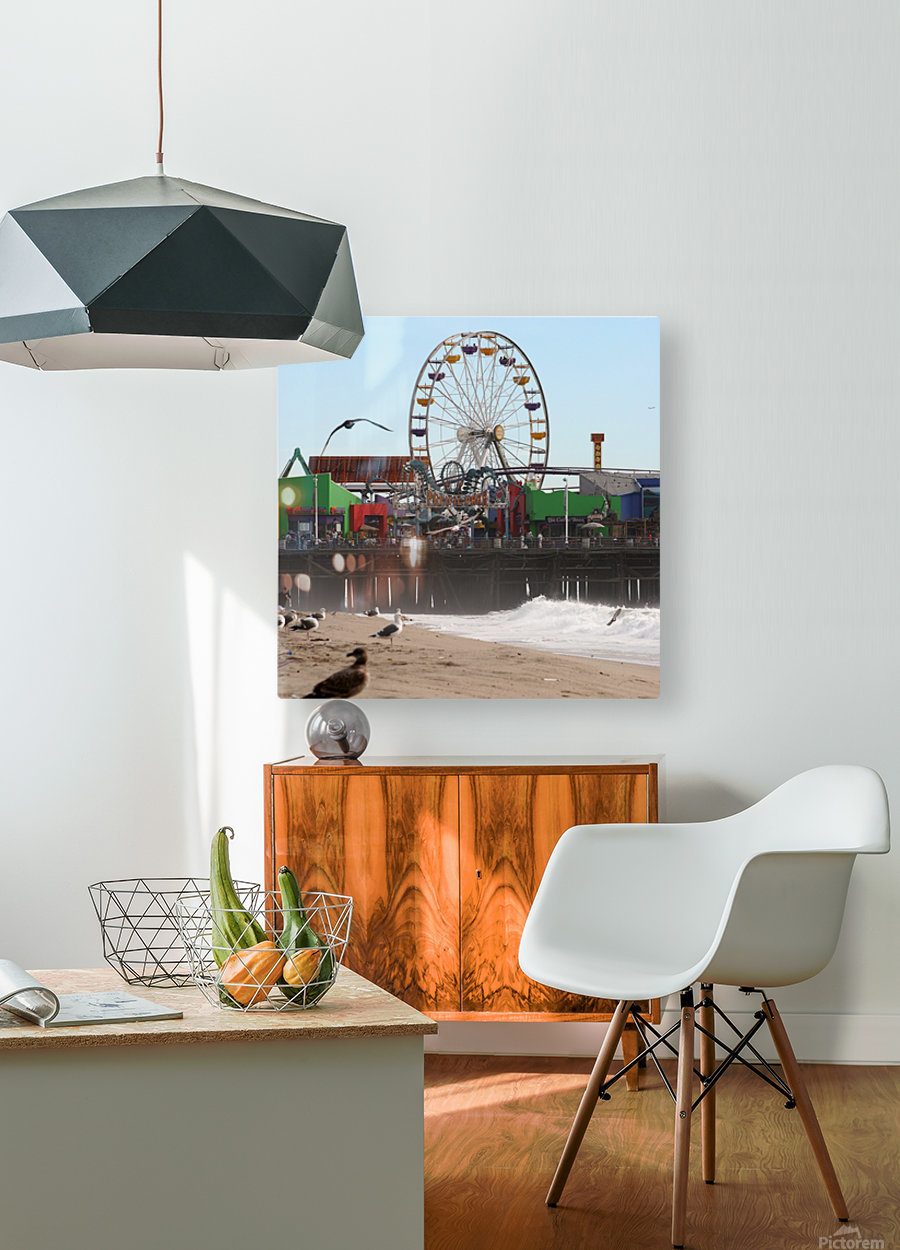 Sea Gulls & Santa Monica Pier  HD Metal print with Floating Frame on Back