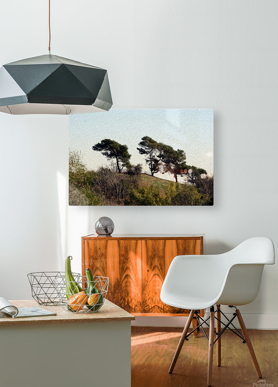 Natural Wind Blown Trees  HD Metal print with Floating Frame on Back