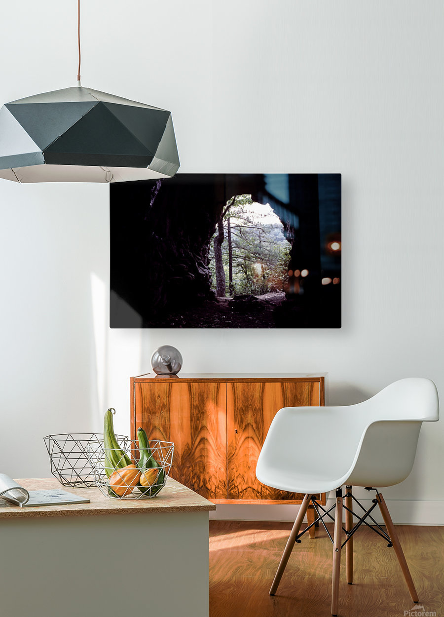 Forest Cave  HD Metal print with Floating Frame on Back