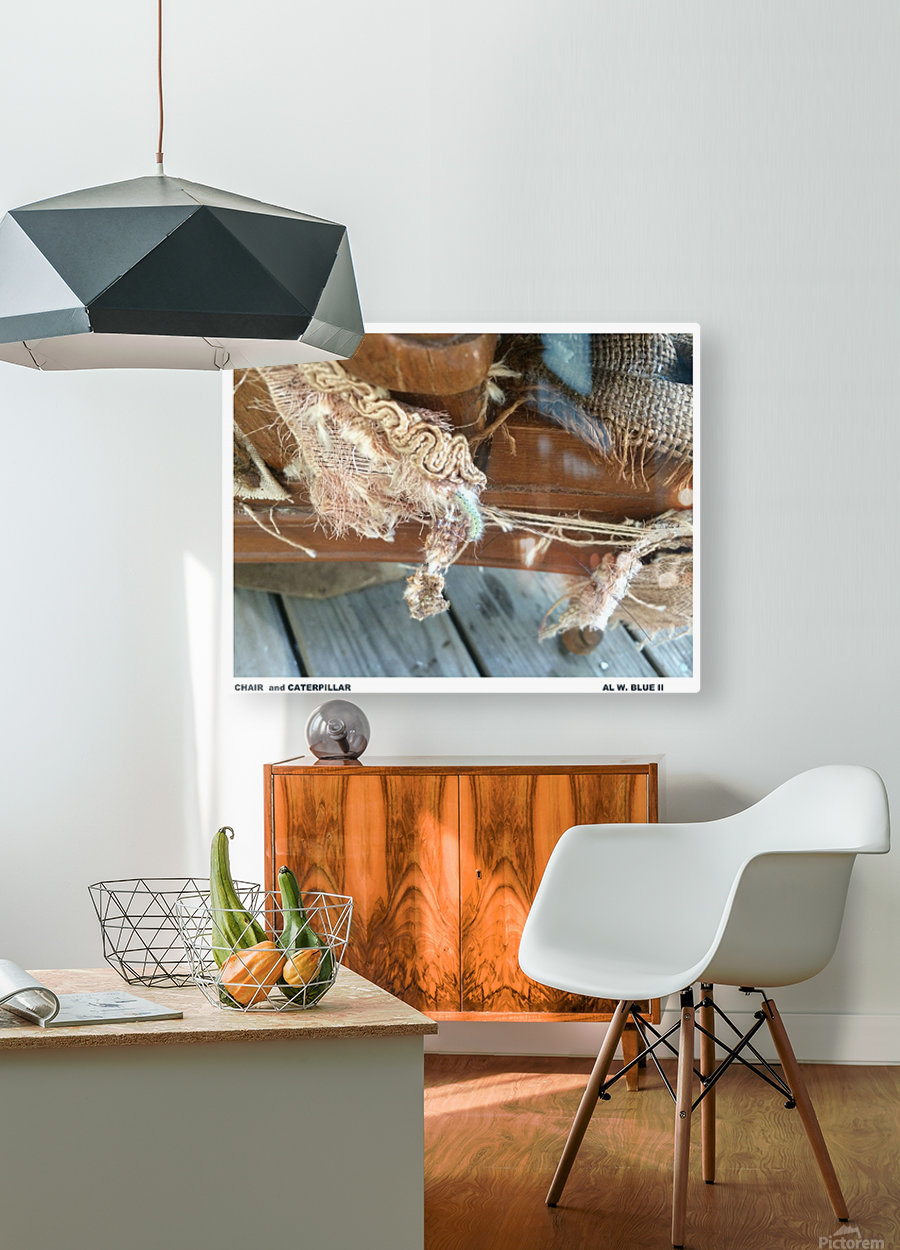Chair & Caterpiller  HD Metal print with Floating Frame on Back