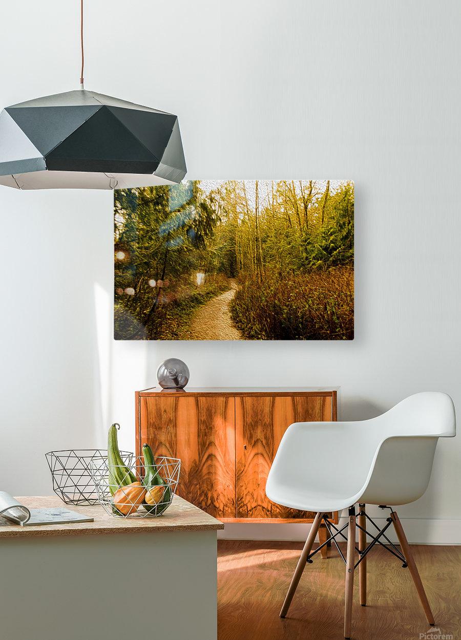 Walk  HD Metal print with Floating Frame on Back