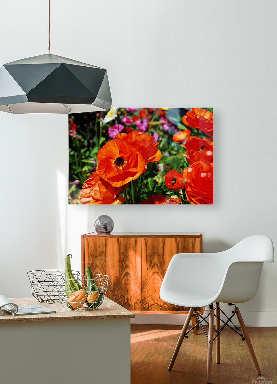 Garden with Flowers  HD Metal print with Floating Frame on Back