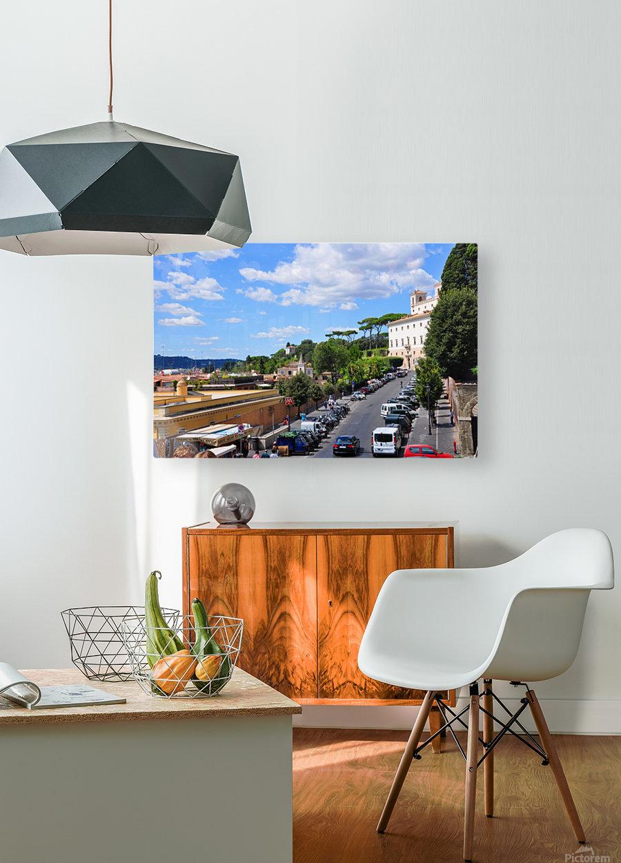 DSC_0383.JPG  HD Metal print with Floating Frame on Back