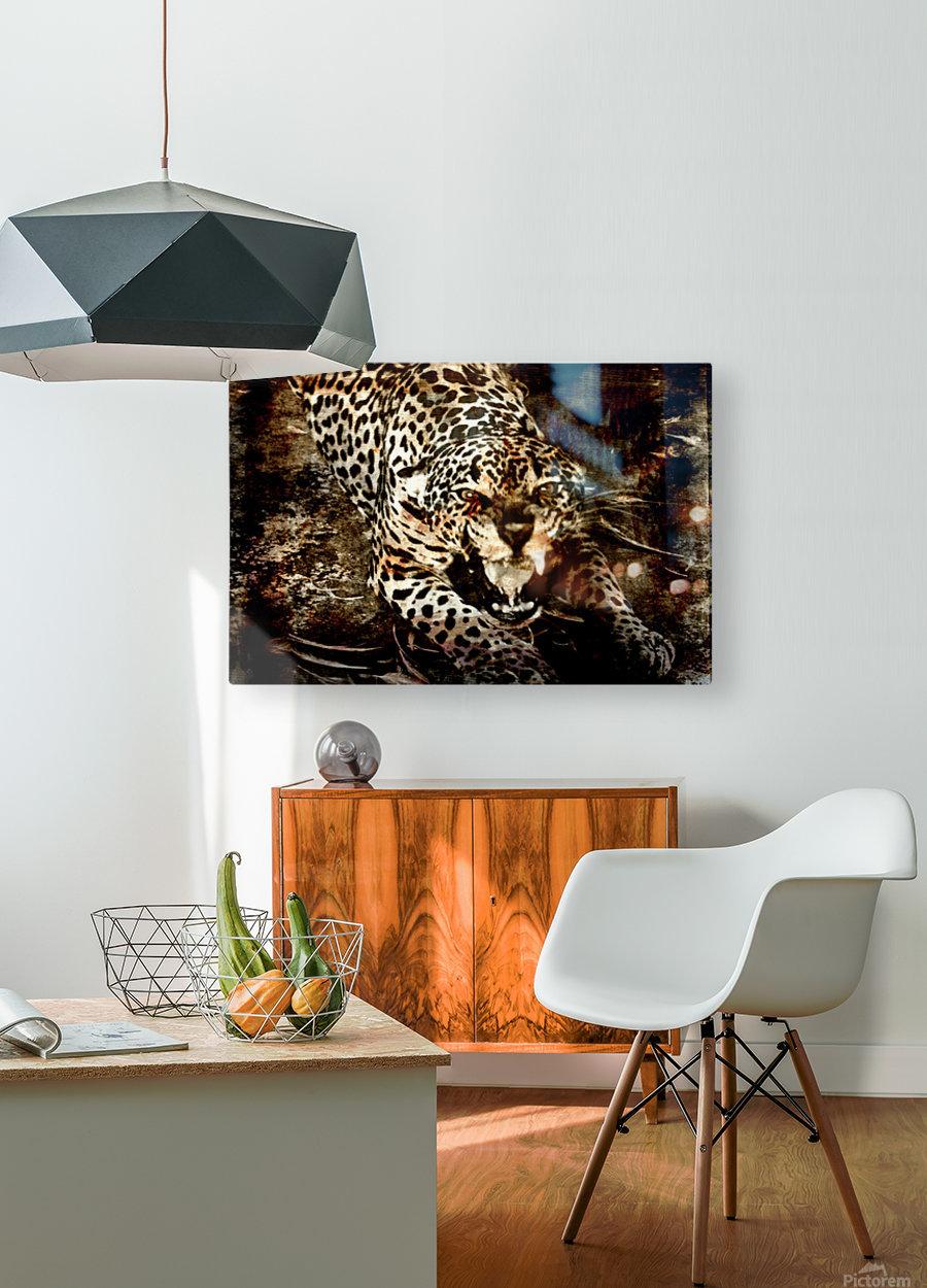 Jaguar Guyana  HD Metal print with Floating Frame on Back