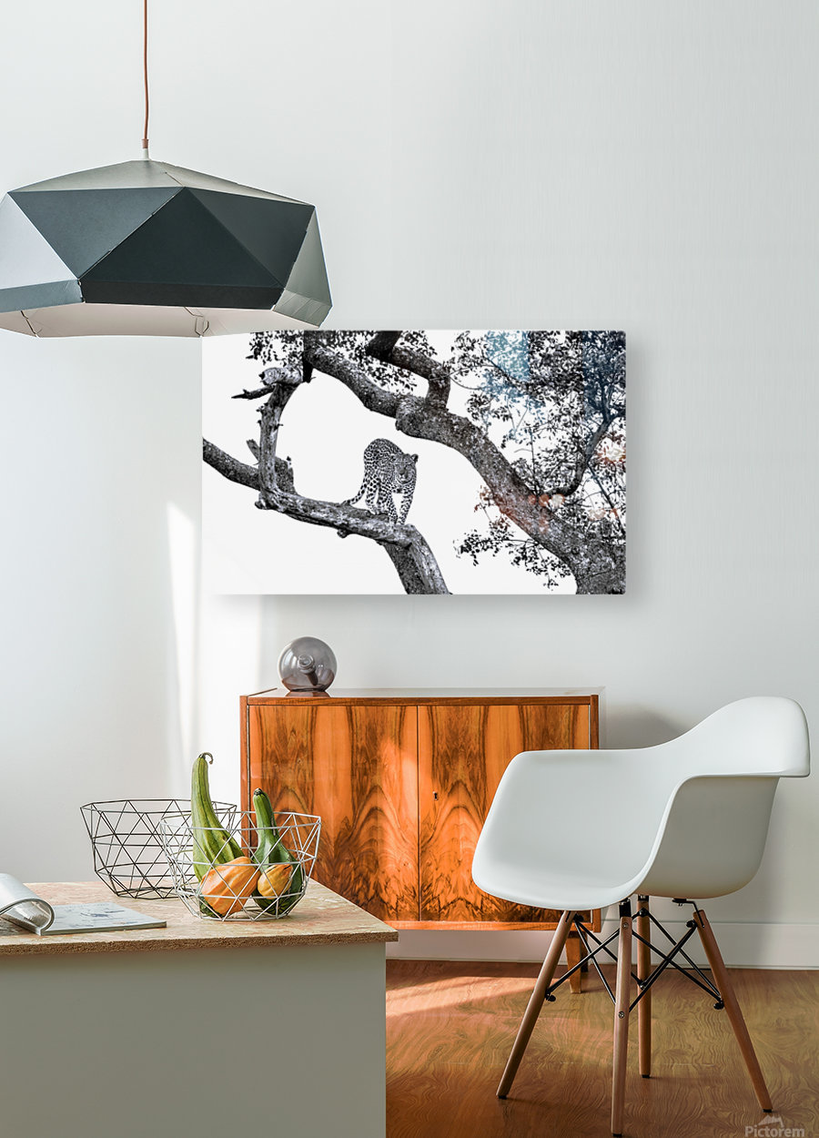 SPOTTED  HD Metal print with Floating Frame on Back