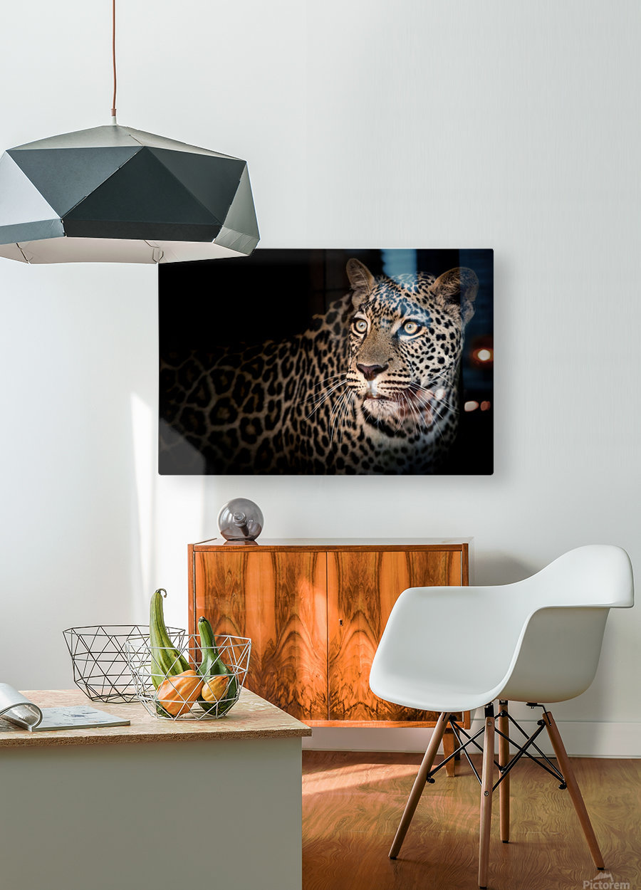 ELUSIVE  HD Metal print with Floating Frame on Back