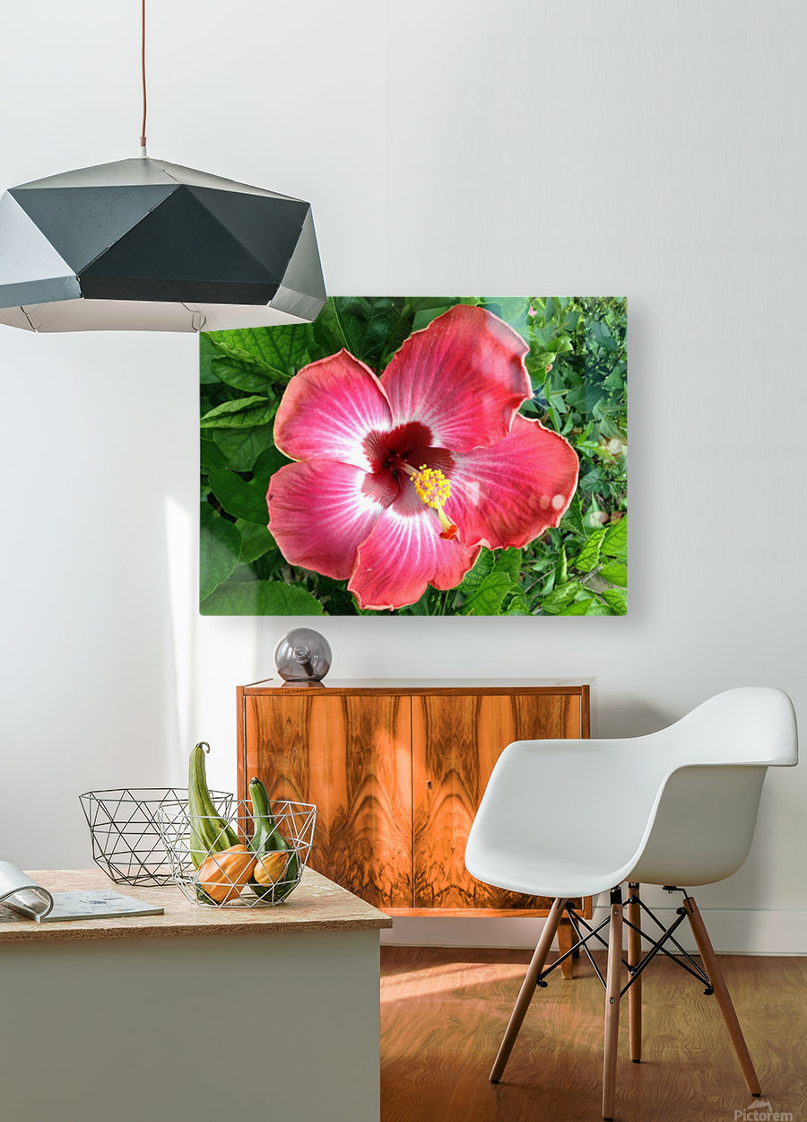 Awesome Petals  HD Metal print with Floating Frame on Back