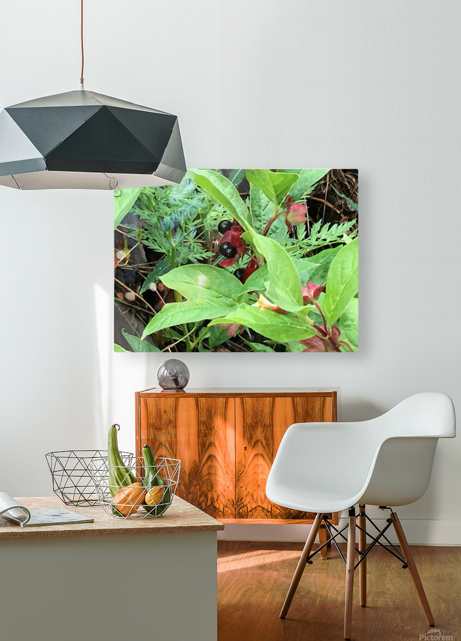 Shaded Berries  HD Metal print with Floating Frame on Back