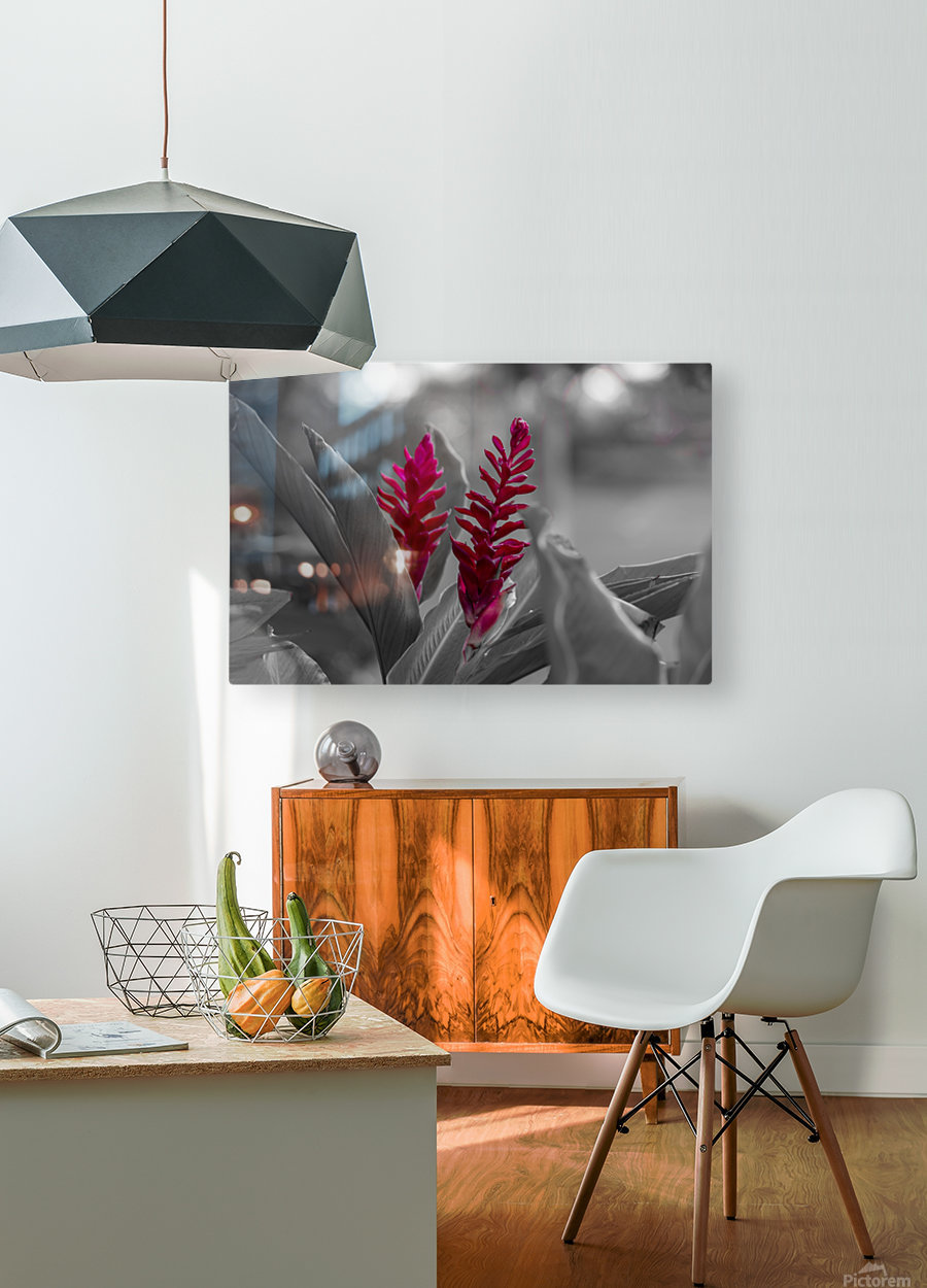 Bloom  HD Metal print with Floating Frame on Back
