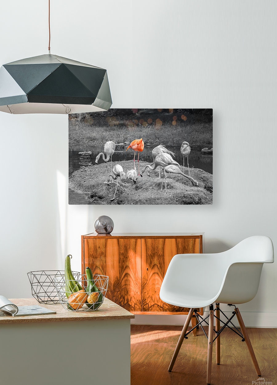 Stand Out  HD Metal print with Floating Frame on Back