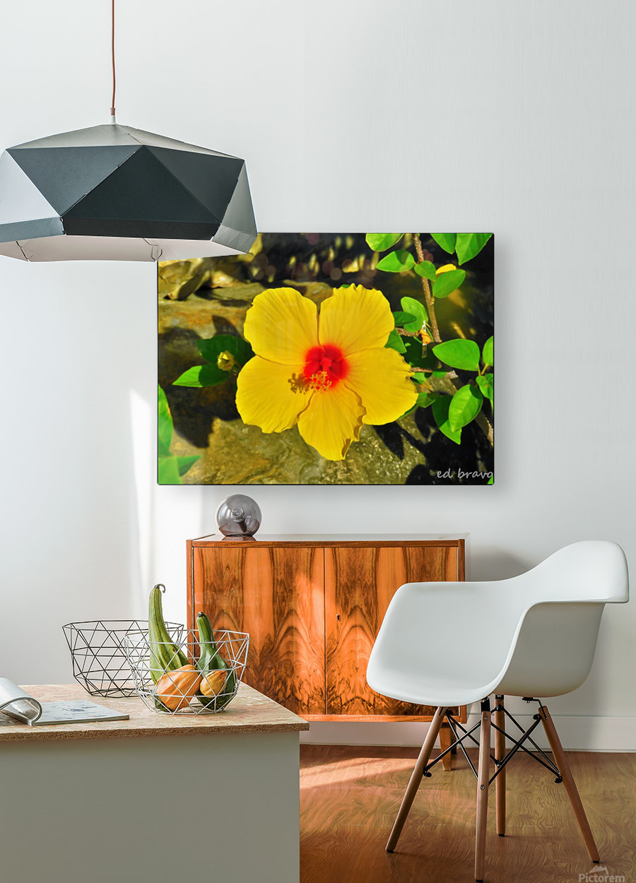 yellow & red  HD Metal print with Floating Frame on Back