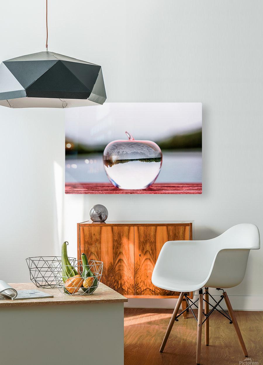 La pomme est dans le ver(re)  HD Metal print with Floating Frame on Back