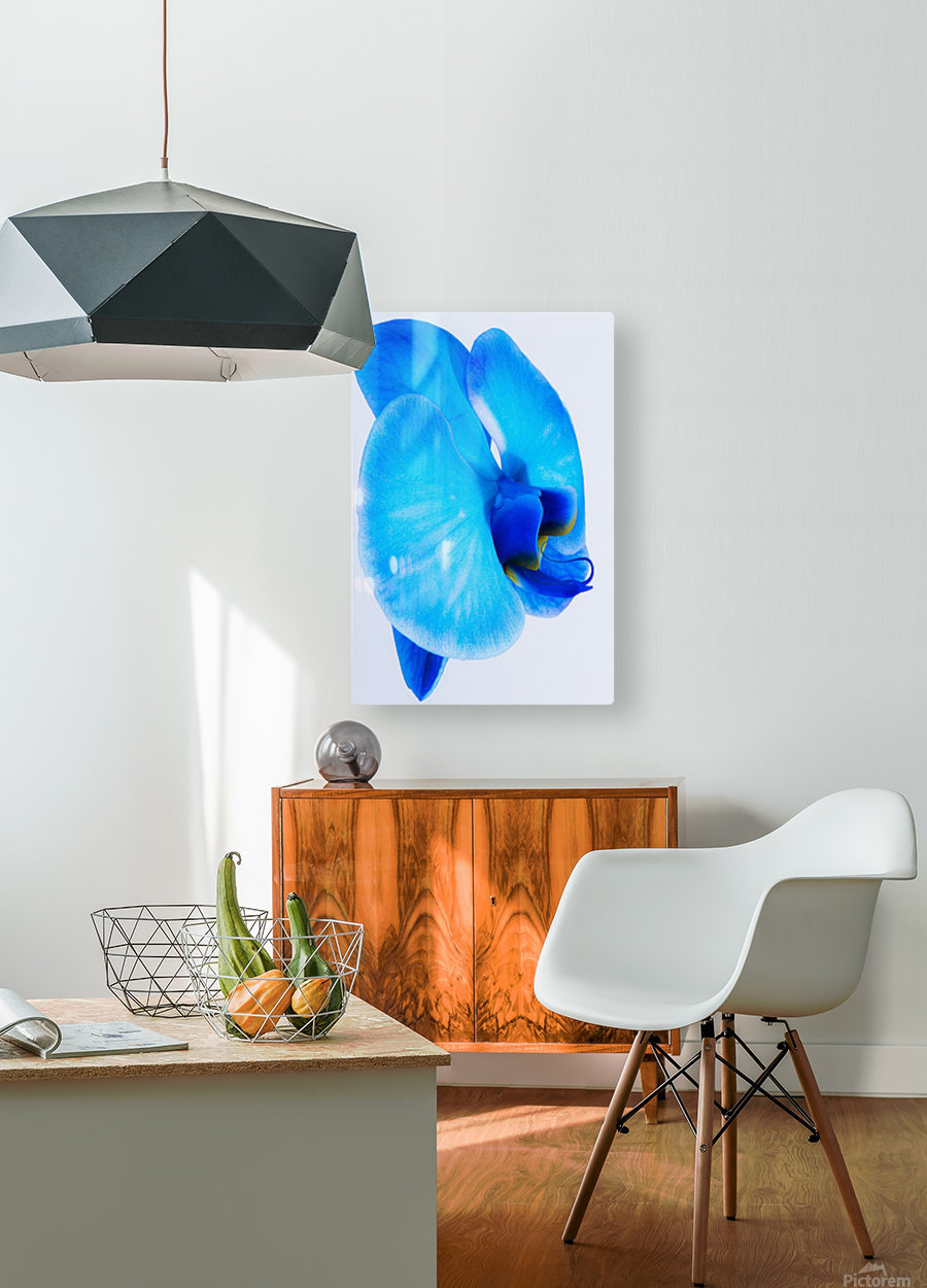 ORCHIDÉE BLEUE  HD Metal print with Floating Frame on Back